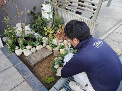 姫路門廻り植栽
