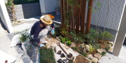 姫路市新築外構植栽工事