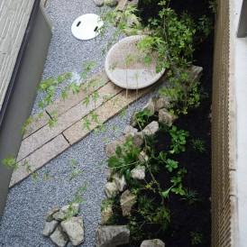 イロハモミジと水鉢