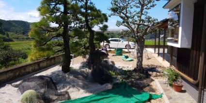 佐用町和風庭の庭木剪定作業