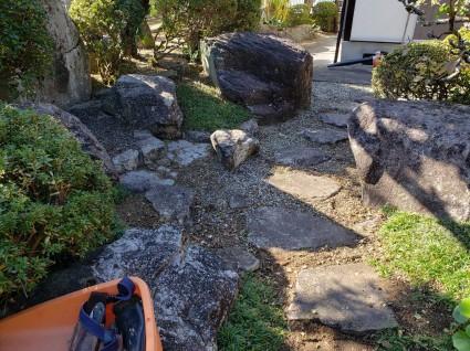 庭の剪定|サンガーデン