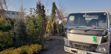 姫路 植木