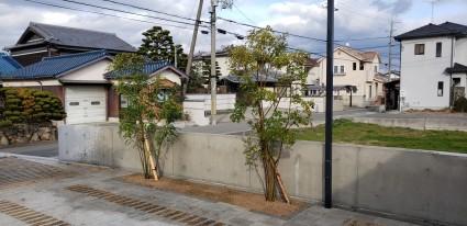 姫路植栽工事