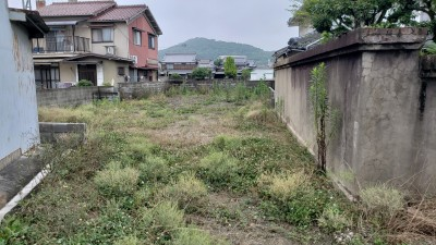 20190701_103758-before
