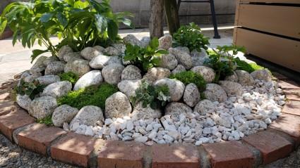 ゴロタ石の庭