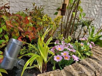 花壇の植栽工事