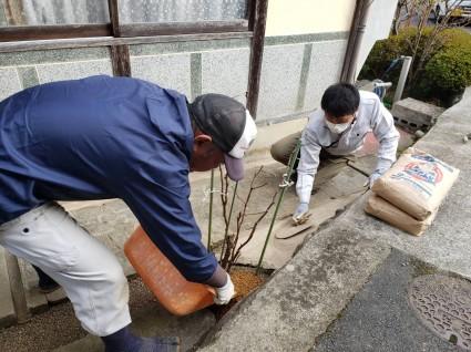 庭の雑草対策|マサ土舗装