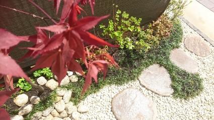 和室前の坪庭