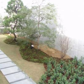 心安らぐ和の空間の植栽の庭 姫路市 H様邸